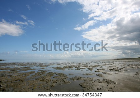 low tide at the borders of the Wadden sea  in the north of Friesland(Holland)