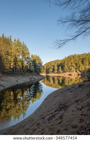 low Tide, Forest lake - stock photo