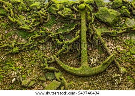 low tide old green anchor and chain