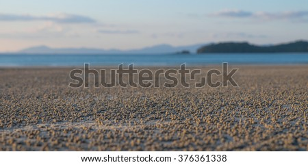 Low tide on the beach at dusk - stock photo