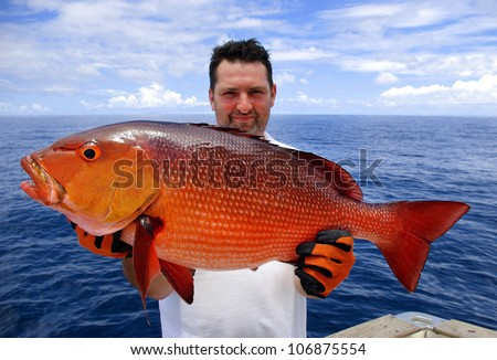 lucky  fisherman holding a beautiful red snapper - stock photo