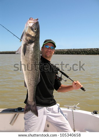 Lucky  fisherman holding a big sea bass - stock photo