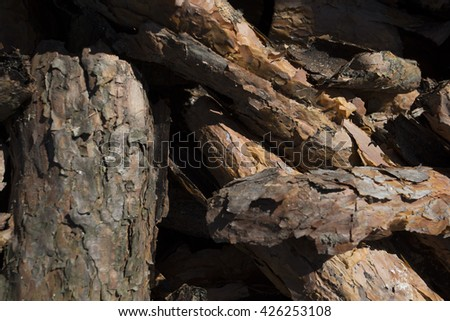 Lumber for forestry industry - stock photo