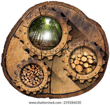 Lumber Industry - Gears on Tree Trunk. Section of tree trunk with wooden gears, green forest, trunks of trees cut and stacked, dry cut firewood logs in a pile. Isolated on white background - stock photo
