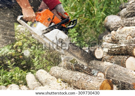 lumberjack cuts the trunk with a chainsaw - stock photo