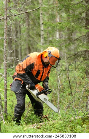 Lumberjack. Northern Finland, Lapland - stock photo