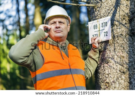 Lumberjack talking on cell phone near marked tree in forest - stock photo