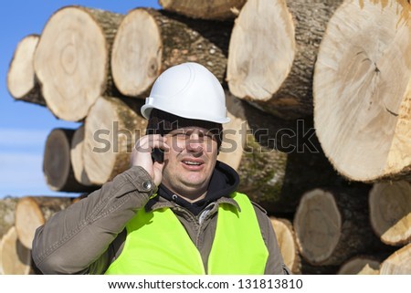 Lumberjack talking on the cell phone near at the log pile - stock photo