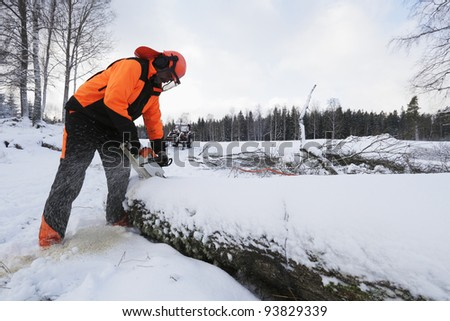 lumberjack, woodcutter in action, winter and snow - stock photo