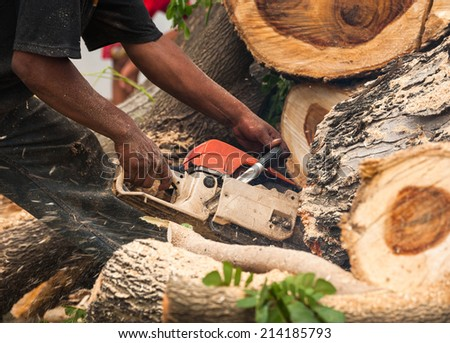 Lumberjack worker in full protective gear cutting firewood in forest with a professional chainsaw