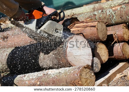 Lumberjack worker with chainsaw cutting log of wood - stock photo