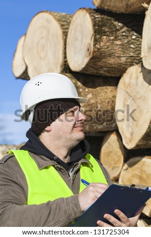 Lumberjack  writing near at the log pile - stock photo