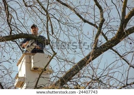 Lumberjacks chopping down a tree - stock photo