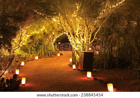 Luminarias and tree lights create a festive Christmas atmosphere in this Southwestern garden night scene. - stock photo