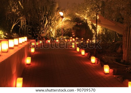 Luminarias decorate a path through garden at night