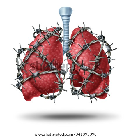 Lung pain medical concept as a pair of human lungs organ wrapped with dangerous barbed or barb wire as a health care symbol of cardiovascular problems as cystic fibrosis or chest pain metaphor. - stock photo