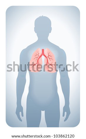 lungs highlighted on the silhouette of a man - stock photo