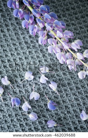 lupine on a knitted wrap