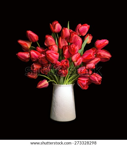 Lush bunch of cheerful elegant vivid red tulips in a white flowerpot isolated on black backdrop with clipping path. View close-up with copy space for text