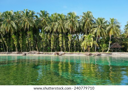 Lush coconut trees with epiphytes and a rustic thatched hut on tropical shore of the Caribbean sea, Zapatillas islands, Bocas del Toro, Panama - stock photo
