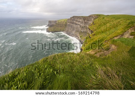 Lush Grass at Cliffs of Moher in Ireland - stock photo