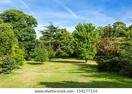 Lush Green Beautiful Woodland Park Garden in the Sunshine - stock photo