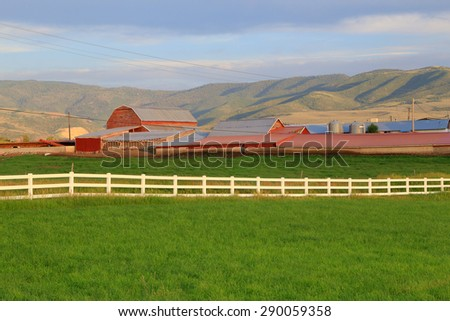 Lush green field and white fence at a rural farm, Utah, USA. - stock photo