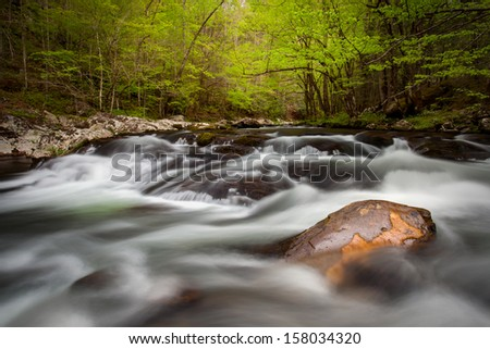 Lush green flowing stream in the Great Smoky mountains National Park - stock photo