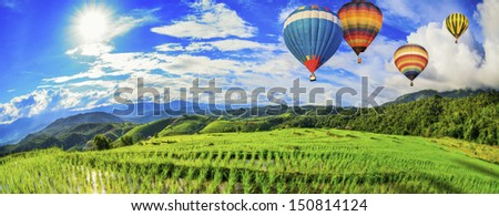 Lush green rice field and blue sky with balloon, In Asia