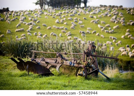 Lush green rolling hills populated with the ubiquitous New Zealand sheep.