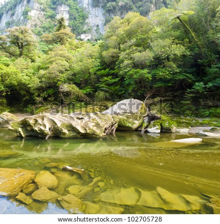 Lush green vegetation in sub-tropical rainforest along Pororai River, West Coast, South Island, New Zealand - stock photo