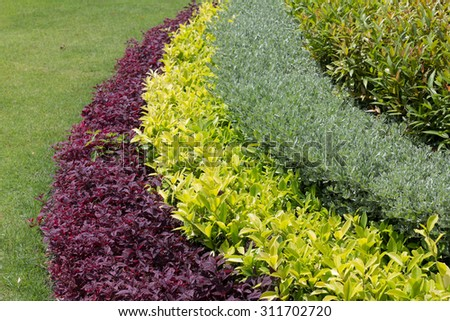 Lush landscaped garden with flower and colorful plants - stock photo