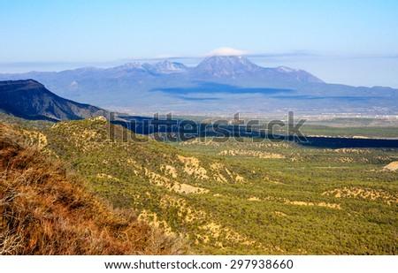 Lush Overlook at Mesa Verde National Park - stock photo
