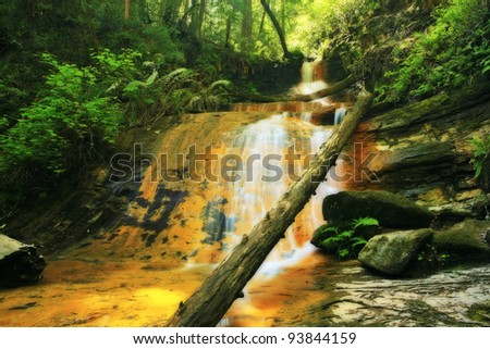 Lush rain forest waterfall: Golden Cascade Falls in Big Basin State Park, California - stock photo
