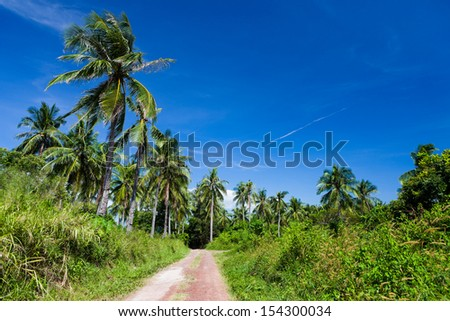 Lush tropic meadow and road with palm trees - stock photo