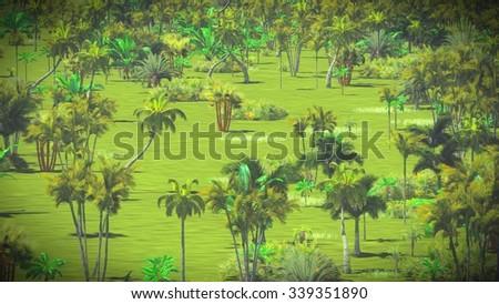 Lush vegetation in the jungle - stock photo