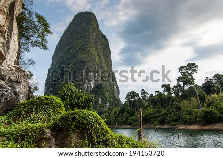 Lush vegetation on rock at Cheow Lan Lake, Khao Sok National Park in southern Thailand - stock photo