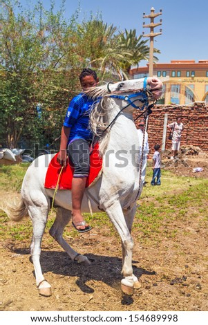 LUXOR, EGYPT - APR 10: Unidentified arabic boy on the horse in the bedouin village near Luxor, on 10 Apr 2013. This is traditional lifestyle for many people in this region of Egypt. - stock photo