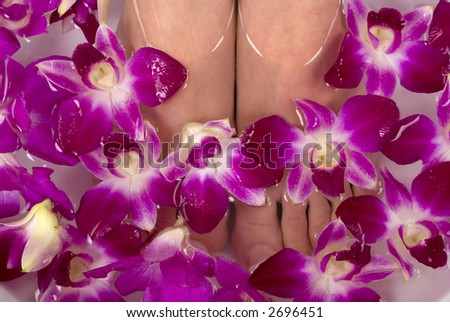 Luxurious spa treatment with orchids - stock photo