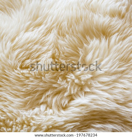 Luxurious wool texture from a white sheepskin rug - stock photo