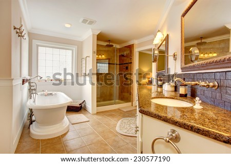 Luxury bathroom interior. Room has glass door shower, cabinet with granite top ans two sinks, mirrors and white bath tub - stock photo
