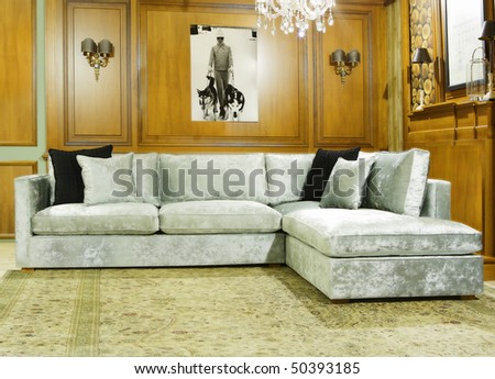 luxury classic living room - stock photo