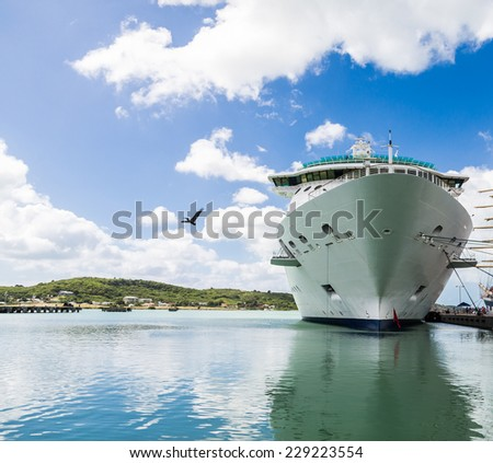 Luxury Cruise ship in a harbor with a pelican flying by - stock photo