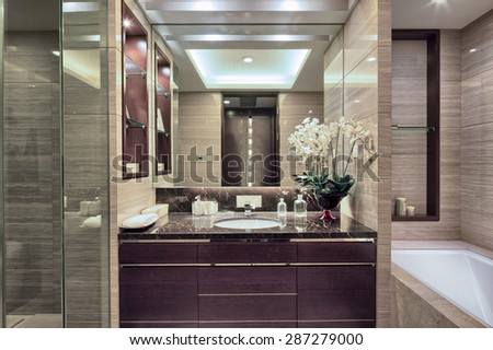 Luxury hotel bathroom interior and upscale furniture with modern style decoration - stock photo