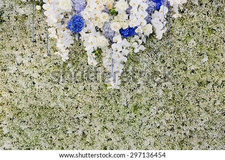 Luxury Indoors Wedding Backdrop Decorate by flowers - stock photo