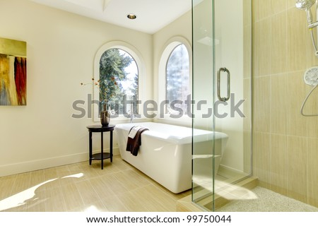 Luxury natural classic bathroom with shower and white tub. - stock photo
