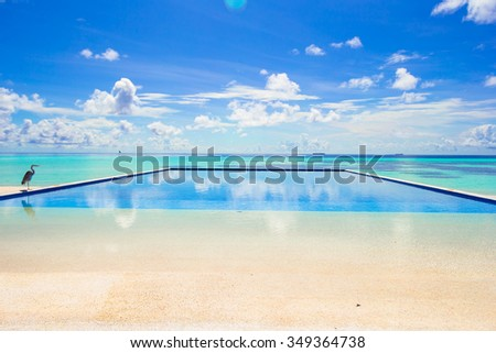 Luxury outdoors infinity swimming pool in the tropical hotel - stock photo