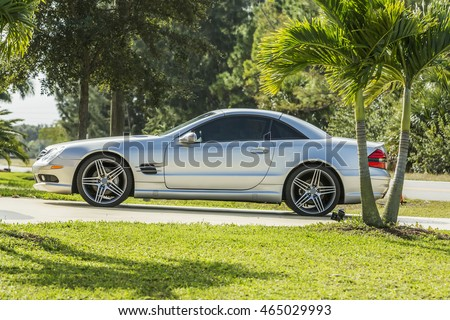 Luxury silver sports car parked between palm trees, Florida