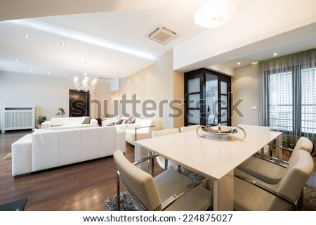 Luxury spacious apartment interior