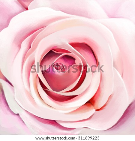 luxury sweet pink rose, closeup,watercolor illustration